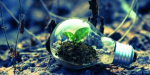 ESG Nachhaltigkeit Marktrunde KW 53