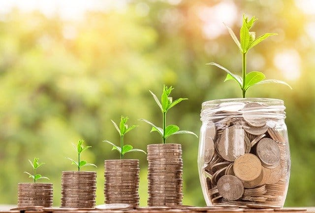 Wachstumsaktien investieren - Münzstapel nebeneinander mit Sprössling einer Pflanze